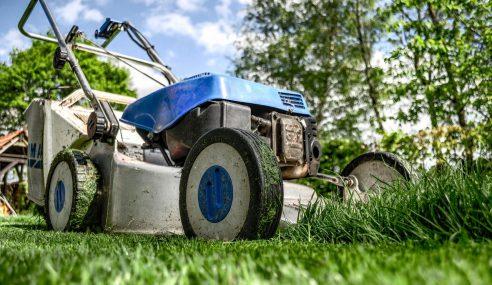 Wertykulacja trawnika – co to jest i jakie przynosi korzyści